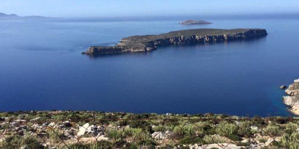 Kalimnos Honig Blick aufs Meer