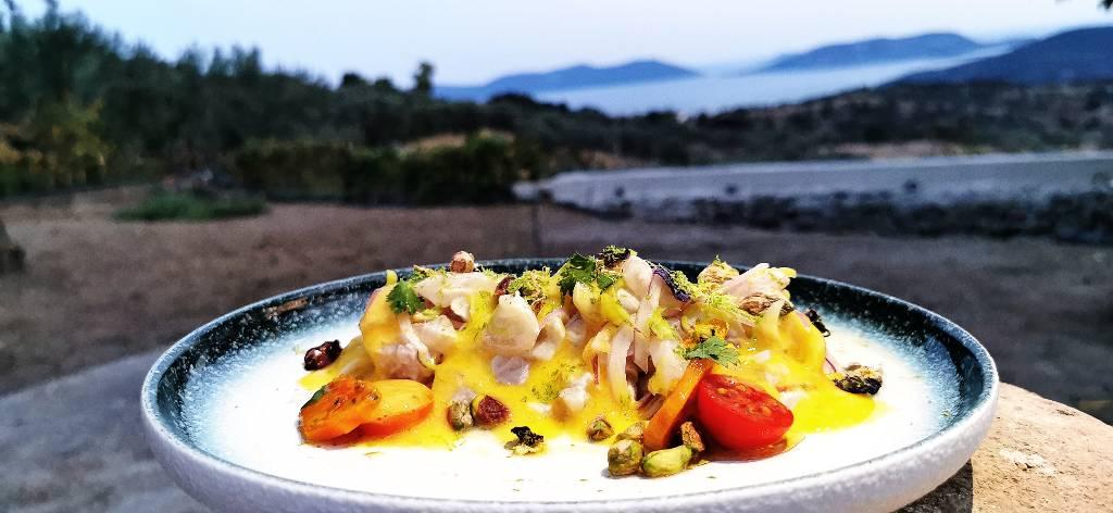 Ceviche mit Olivenöl von Physi
