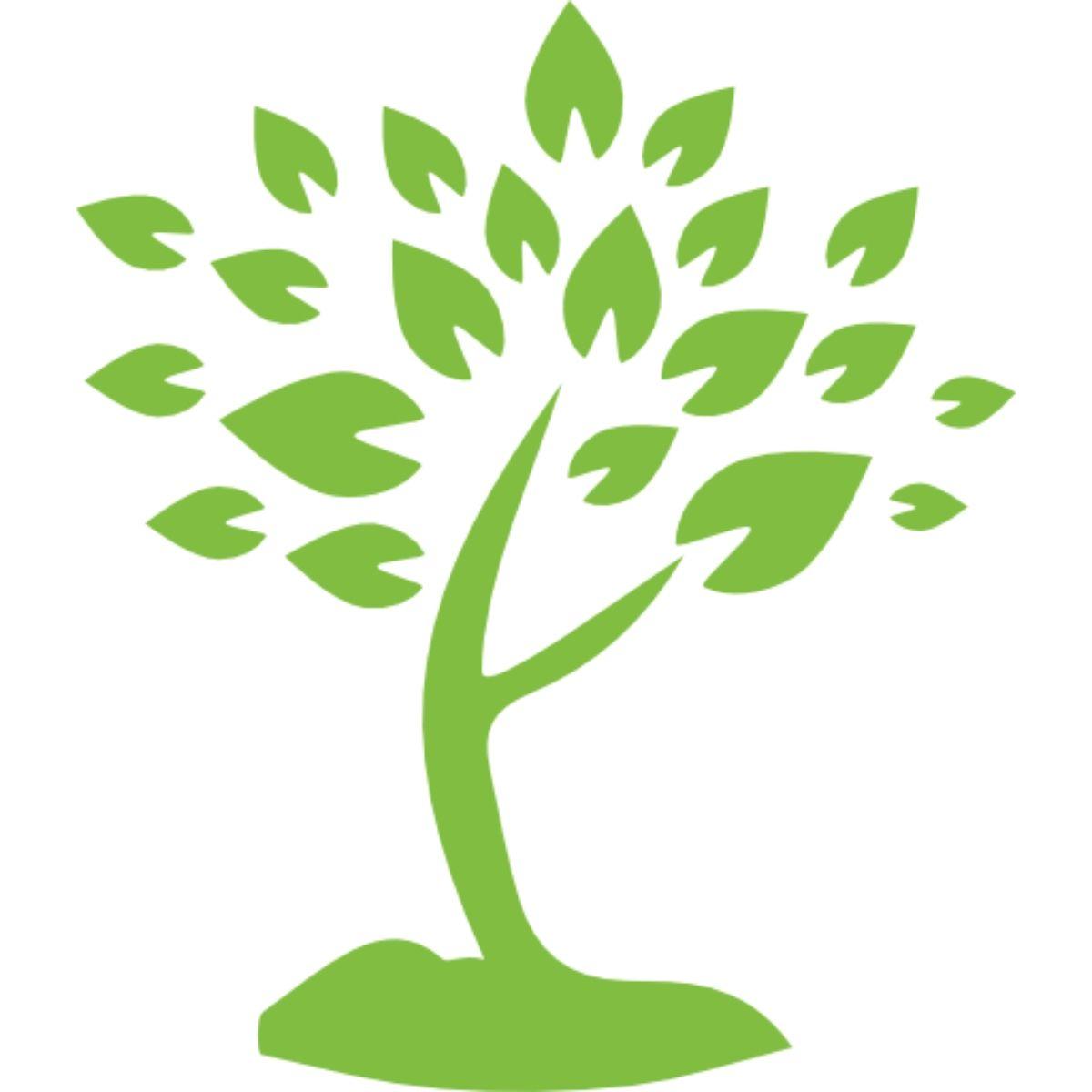 Physi Baum Icon